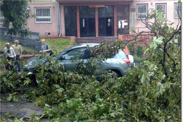 Разрушительный шторм вВолгограде срывает крыши иломает деревья