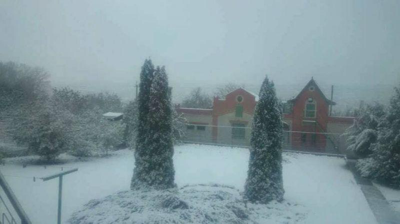 В Харкове первый cнег выпал ночью. Мокрый снег продолжал накрывать город в течение всего дня и прекратился лишь вечером.