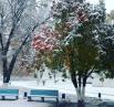Красота, да и только! Жаль, только, что первый снег выпал осенью.