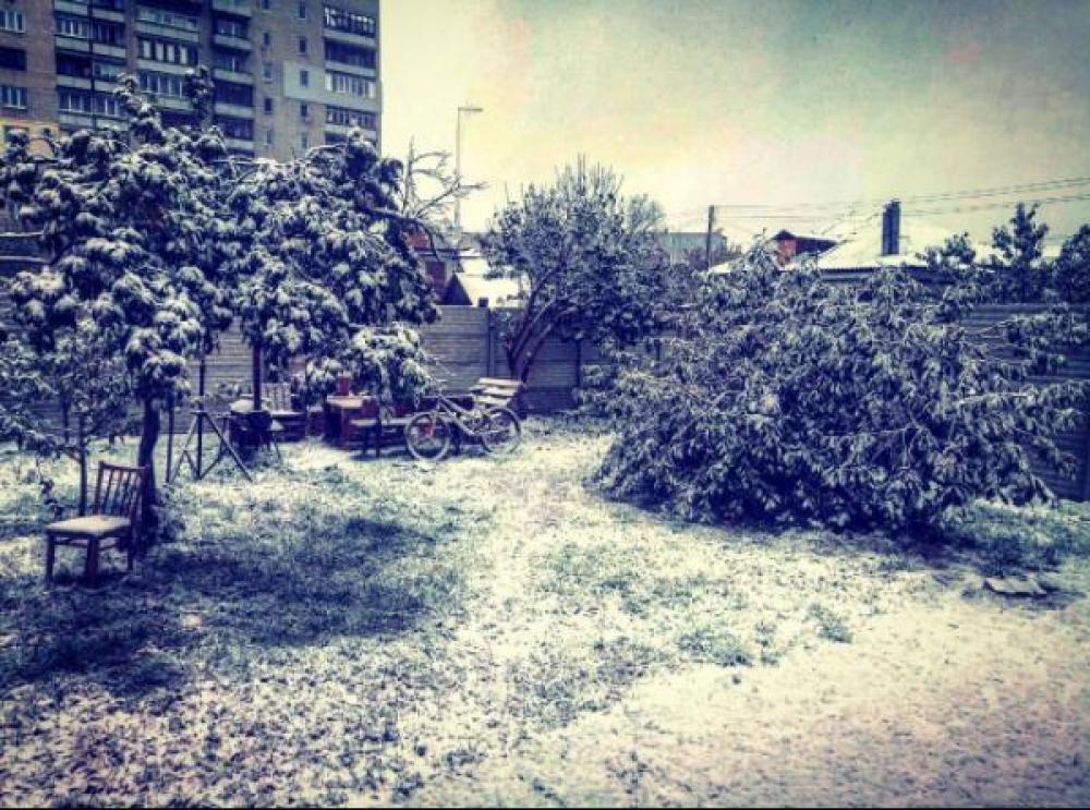 Яркими зимними фото делятся харьковчане в Инстаграм.