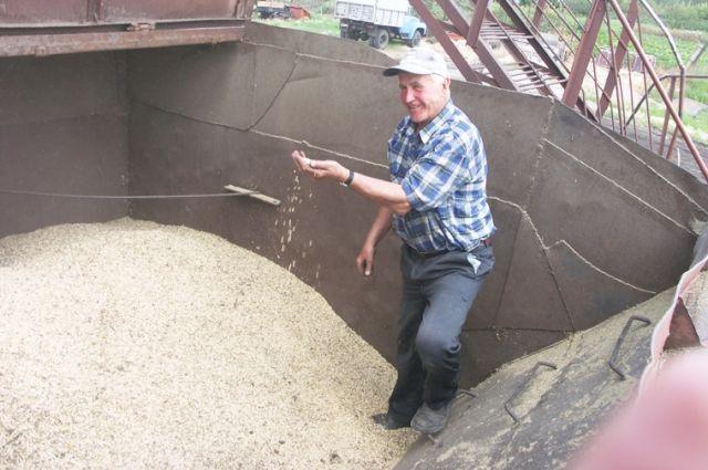 Ставрополье отправило наэкспорт на30% больше зерна