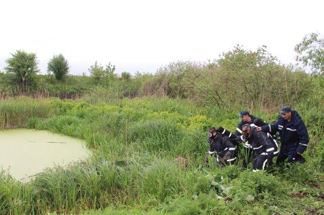 ВВодоеме вВинницкой области найдены три трупа 05ноября 2017 15:01