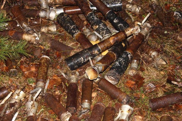 Практически 1200 боеприпасов времён войны загод обнаружили вКурской области