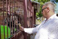 Директор барнаульского зоопарка накормил хищника мороженым