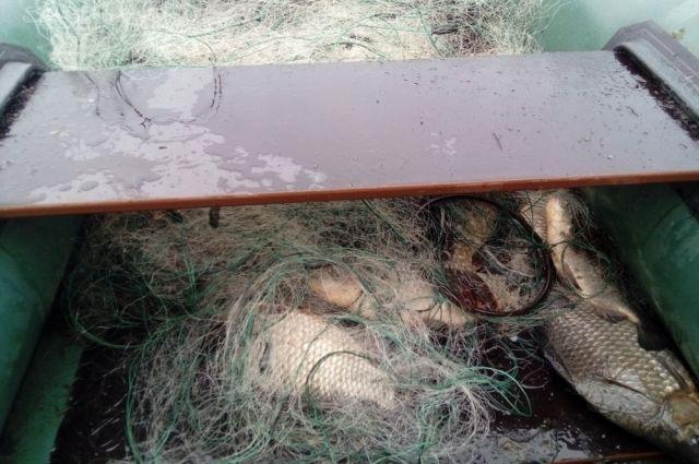 Таможенники Казахстана огнём остановили русских браконьеров наКаспии
