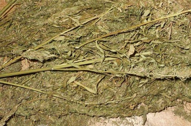 Полицейские изъяли у кузбассовца более 1 кг марихуаны.