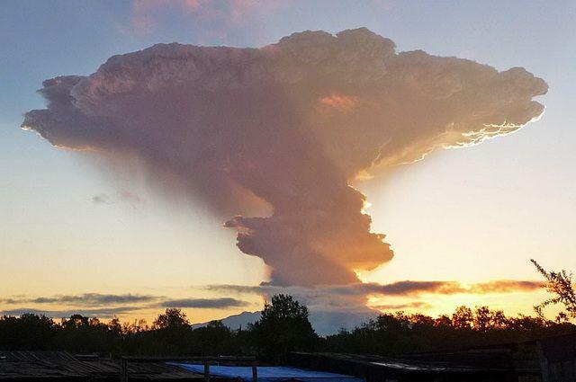 Шивелуч выбросил пепел навысоту 8-ми километров