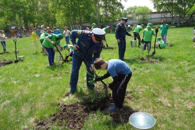 Акция «Живи, лес!» в 2017 году добавила уссурийской тайге 100 тысяч деревьев.