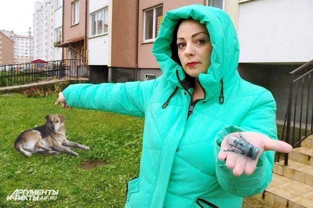Екатерина Павлюкевич показывает место, где были расстреляны собаки.