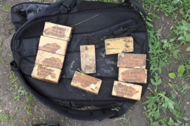 Гражданин Киржача сохранял дома 17 тротиловых шашек