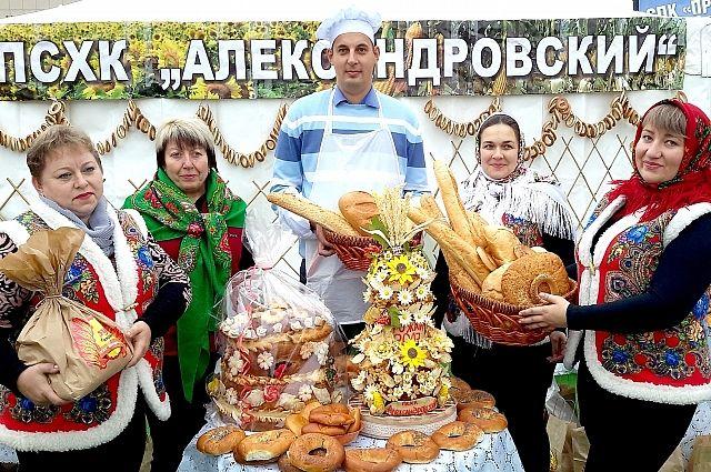 Александровцы в 2017 году собрали один из самых высоких урожаев в Ростовской области.