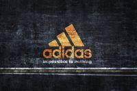 Adidas приписал свои крымские магазины к территории РФ