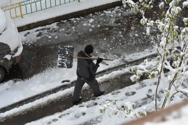 В Тюмени ОНФ контролирует инцидент с уборкой снега на набережной