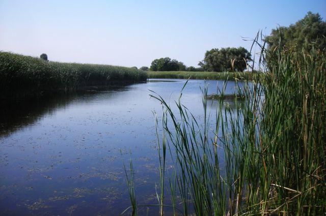Проект по созданию парка «Пермский» подразумевает объединение 33 природных территорий.