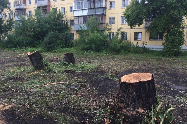 Генпрокуратура потребовала возбудить дело понезаконной вырубке деревьев наЧТЗ