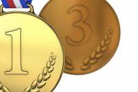 «Золото» и «бронзу» завоевали жители Приангарья на соревнованиях.