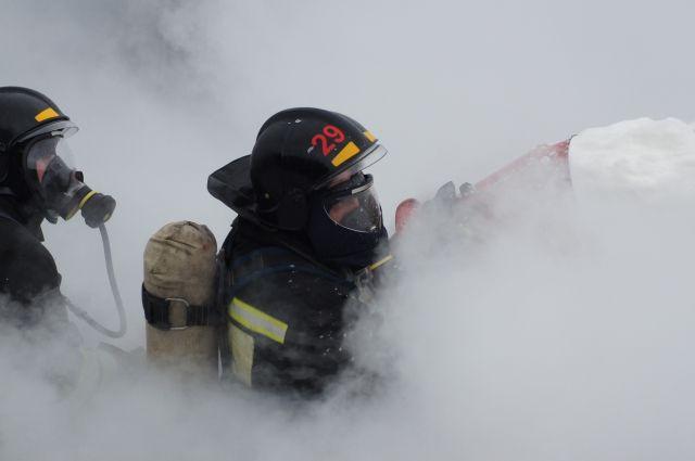 С начала года на пожарах в Нижегородской области погибло 176 человек.