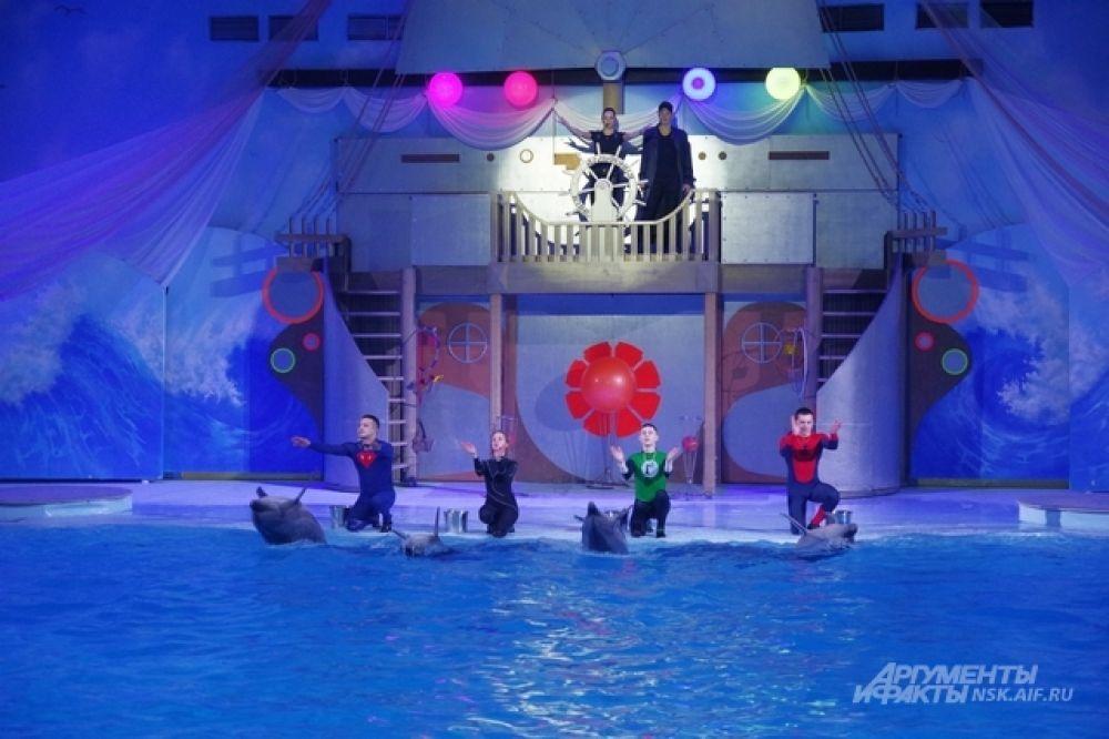 У новосибирского шоу морских млекопитающих большой и разнообразный состав участников. Среди артистов четыре дельфина, два кита белухи, два южноамериканских морских льва и один северный морской лев сивуч. И, конечно, моржиха Тика.
