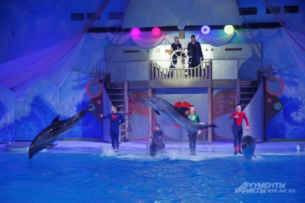И уж, конечно, мало кто сравнится с дельфинами в скорости и прыжках из воды.