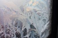 Зимой важно есть больше цитрусовых