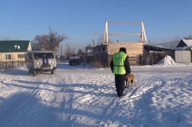 Служебный пес помог отыскать пропавшую бабушку