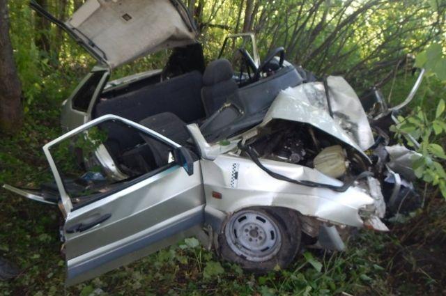На полной скорости машина влетела в дерево. В результате аварии 24-летняя пассажирка погибла на месте.