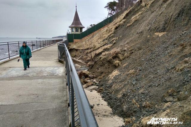 Названа причина обрушения берега под резиденцией Президента в Пионерском.