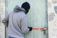 Кражи составляют около половины всех преступлений в Омской области.