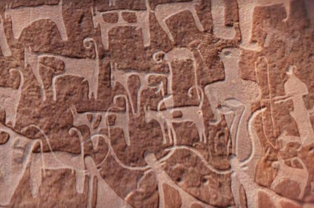 В Саудовской Аравии нашли древнейшие изображения собак