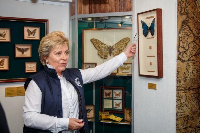 Директор Музея мирового океана на ледоколе «Красин».