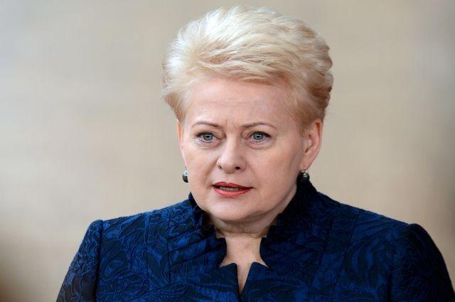 Президент Литвы рассказала главам ЕС, как страна борется с пропагандой