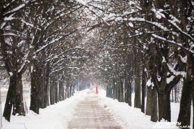 Погода будет комфортной для прогулок.