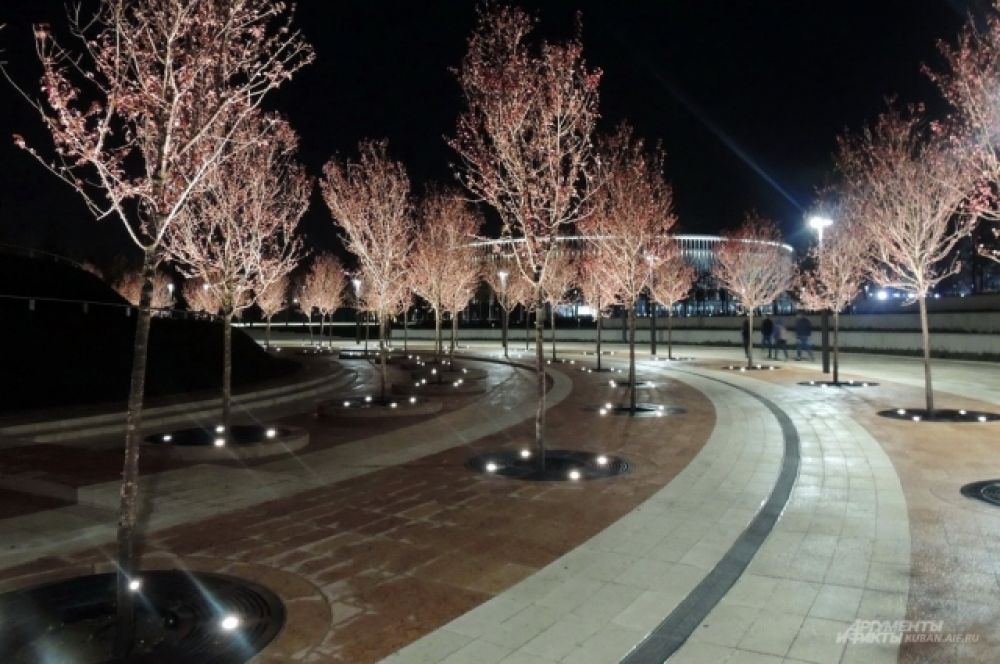 В парке стоит побывать после захода Солнца.
