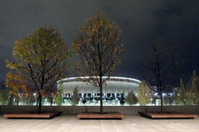 Листья на деревьях в Краснодаре долго остаются зелеными.