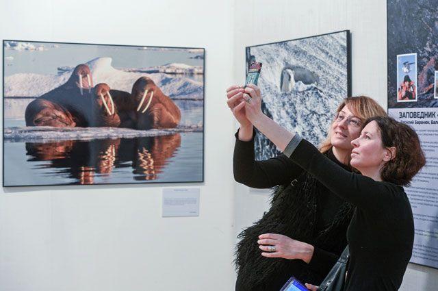 Выставка «Первозданная Россия» путешествует по всей стране, и посетить её можно бесплатно.
