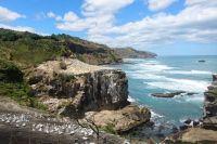 Маленького оренбуржца с ДЦП могут научить плавать в Новой Зеландии.