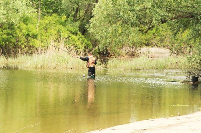 В восстановленные водоёмы волжской поймы уже вернулась жизнь.