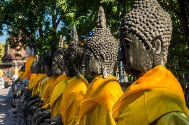 Деловые люди изТаиланда хотят построить превосходный парк развлечений вАнапе