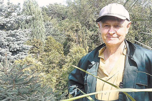 40 лет Виктор Кузнецов сажал эти деревья.