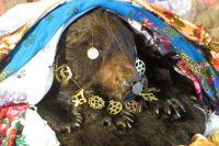 Убитого медведя посредством обряда делают покровителем рода.