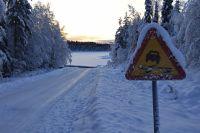 Когда снегопад, а на дорогах гололёд и колея, управлять машиной гораздо трудней.