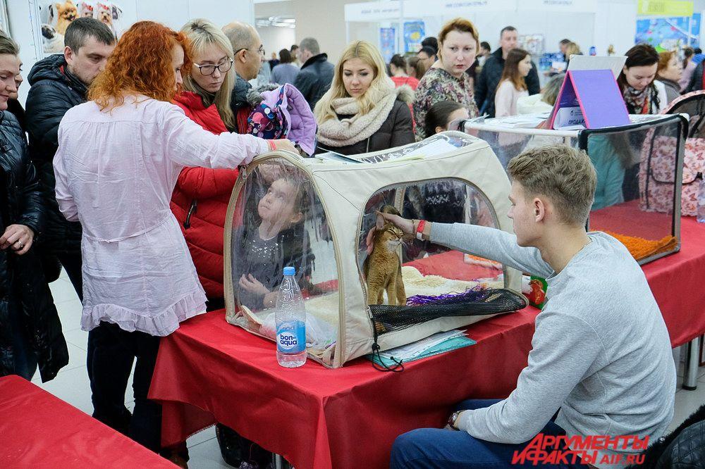 Многие пришли на выставку вместе с детьми.