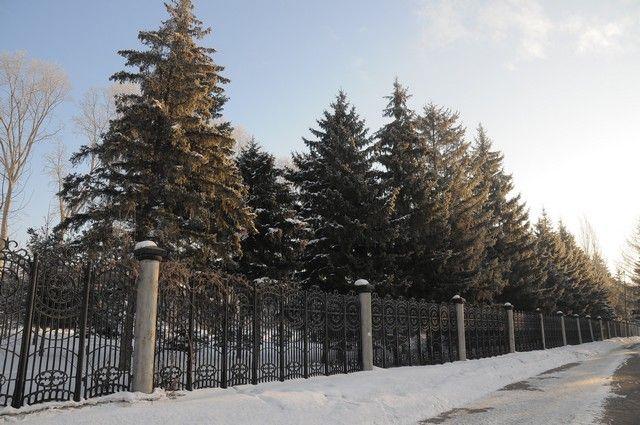 Морозы в Омской области ослабеют в конце недели.