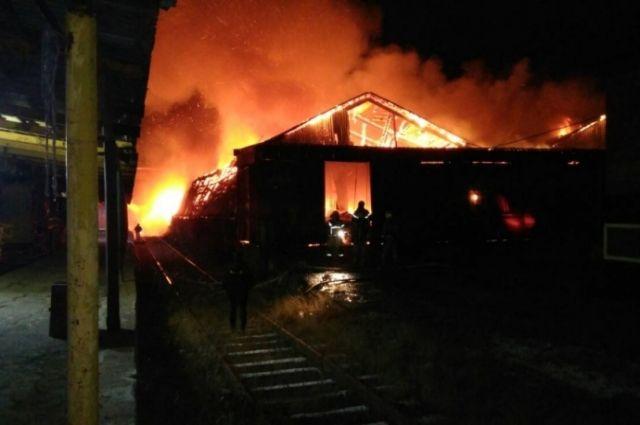 Во время пожара никто не пострадал.