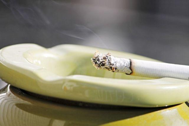 По предварительной версии, причиной возгорания стала неосторожность при курении.