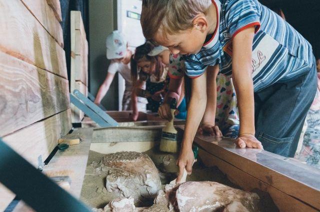 В Перми, Осинском и Оханском районах проводили занятия для дошкольников и младших школьников, а для взрослых – лекции. Скоро выйдет документальный фильм о слоне, снятый киностудией «Новый курс».