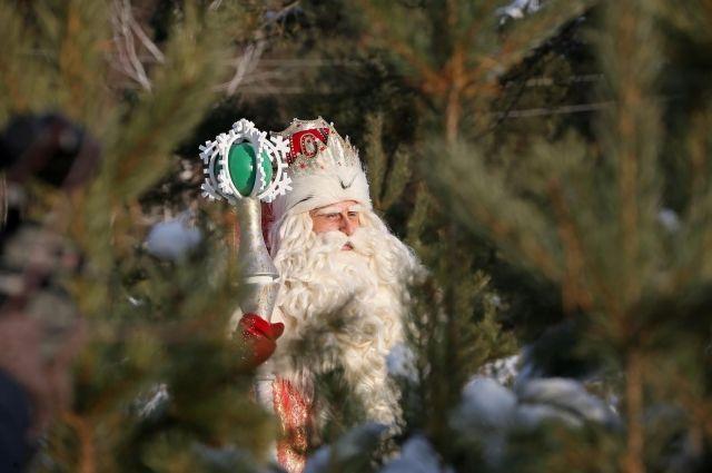 Ижевск станет 14 городом путешествия Всероссийского Деда Мороза