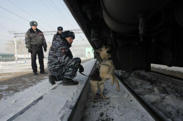 В Кузбассе женщина погибла, пытаясь пролезть под вагонами грузового поезда.