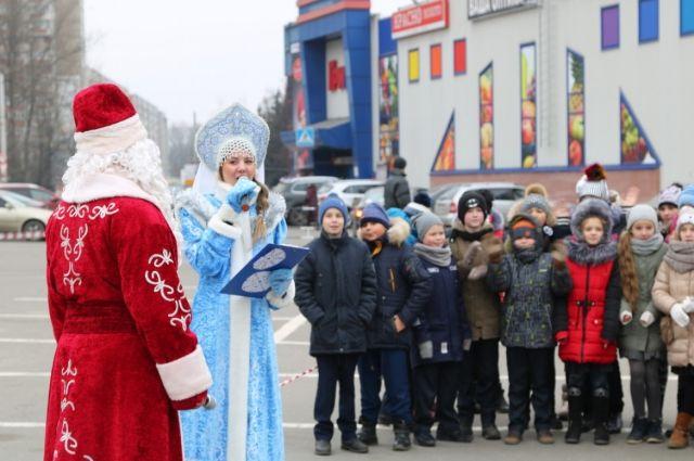 ВБрянске установят больше 30 новогодних живых елок