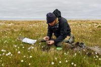Научные исследования острова Вилькицкого должны быть продолжены